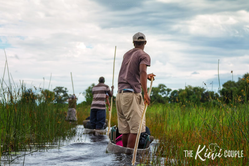 Mokoro through Okavango Delta