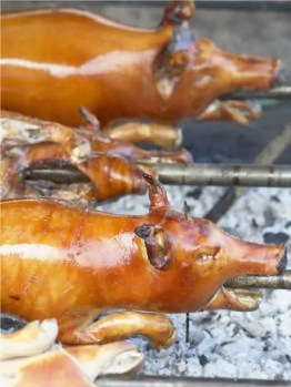 Roasted Pig - Phillippines