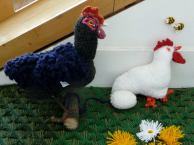 Knitted chicken coup