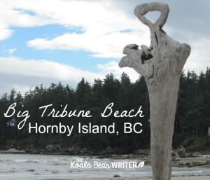 Explore Hornby Island, BC