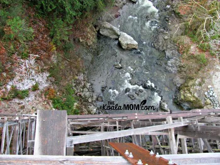 The creek below the Kinsol Trestle