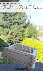 Build a Popsicle Stick Bird Feeder