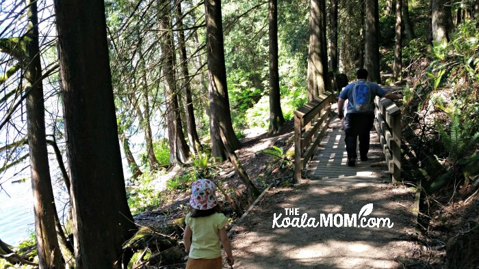 A toddler and her daddy hiking along the Buntzen Lake Trail