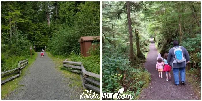The trail to San Josef Bay in Cape Scott Provincial Park
