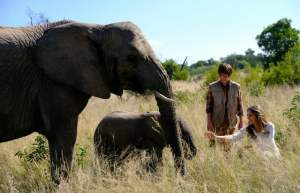 Phoenix Wilder: and the Great Elephant Adventure {movie review}