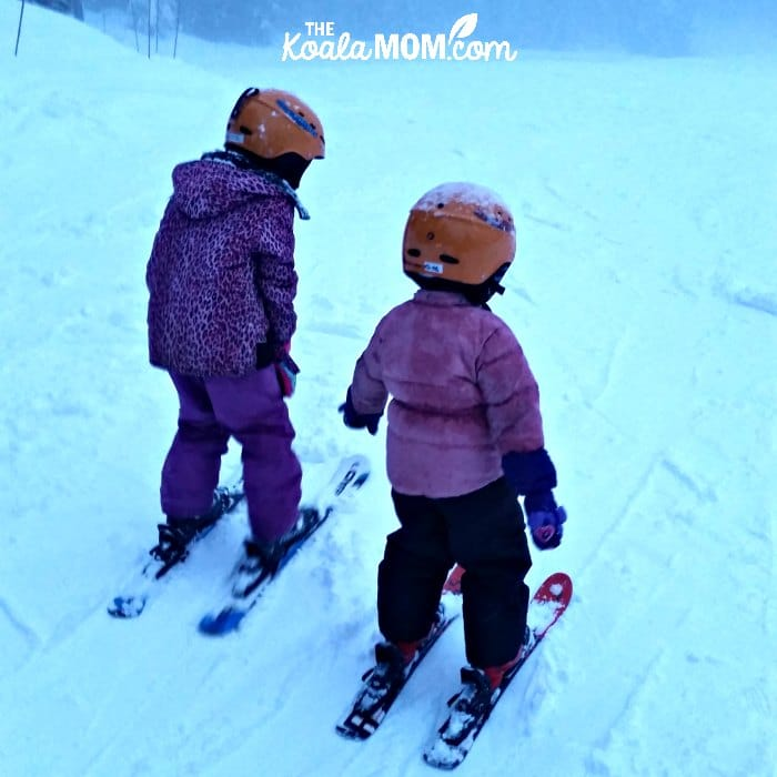 7-year-old and 4-year-old on downhill skis, ready to start skiing.