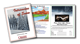 The Intricacies of Snow nature unit study from Creation Illustrated