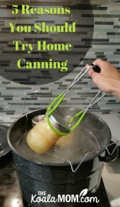 5 Reasons Why You Should Try Home Canning