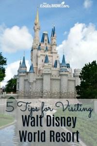 5 Tips for Visiting Walt Disney World Resort