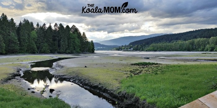 Views of the Burrard Inlet from the Shoreline Trail in Port Moody (one of the easy, family-friendly hikes around Greater Vancouver)