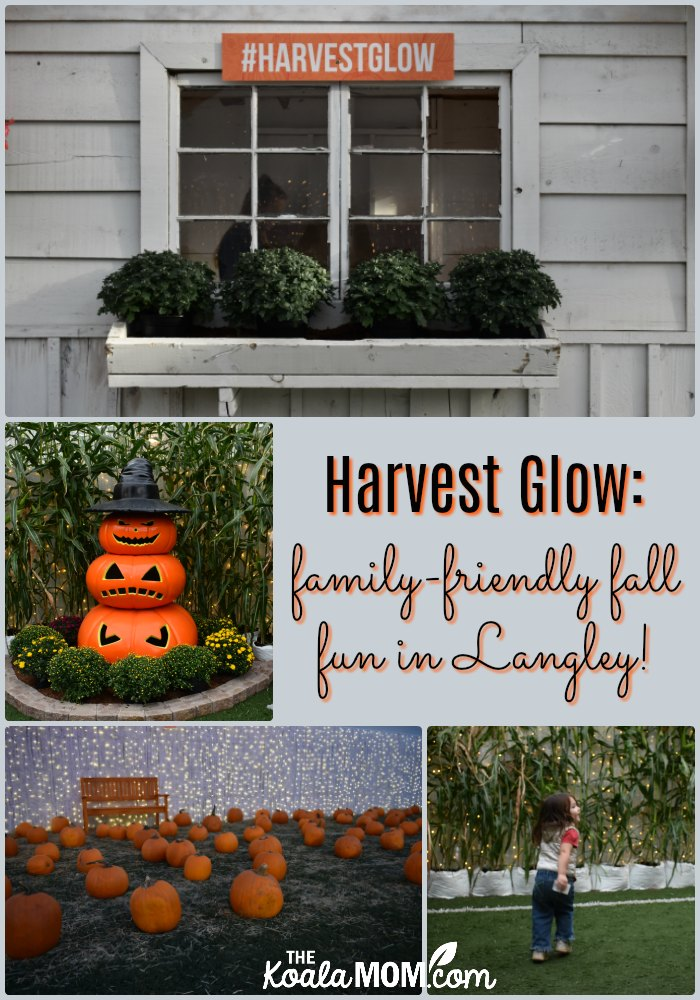 Harvest Glow: family-friendly fall fun in Langley, BC