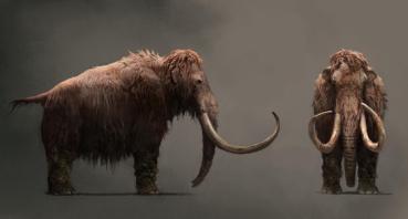 Far-Cry-Primal-Mammoth
