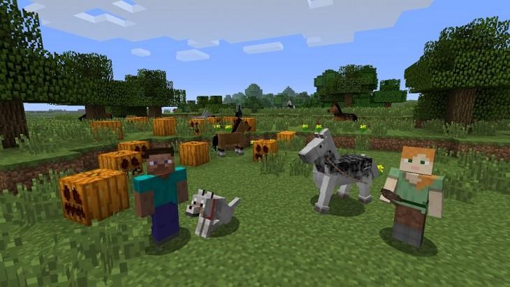 MinecraftWii UNews_Pic02