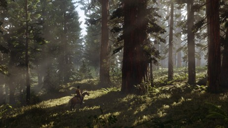 RDR2_Screenshot 003