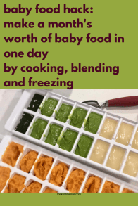 easy baby food hack. Make a month's worth of baby food in one day by cooking, blending and freezing.