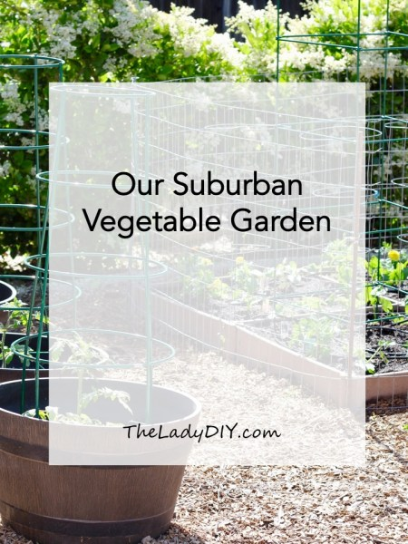 "Title photo for the blog post ""Our Suburban Vegetable Garden."" Photo of the full raised-bed garden."