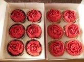 Red piped roses