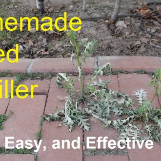 Homemade Roundup Weed Killer, Only $0.10!
