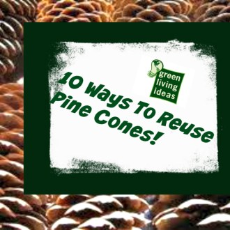 Greener Living Tips: 10 Ways To Reuse Pine Cones!