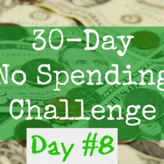 June No-Spend Month Challenge: Day 8 (Preparing For A Purge)