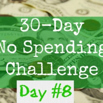 August No-Spend Month Challenge Day 8: Preparing For A Purge!