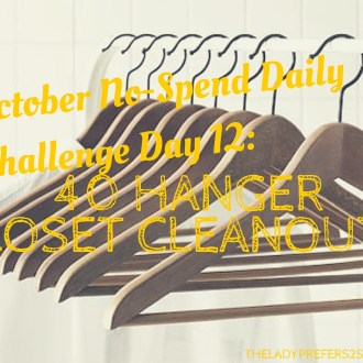 October No-Spend Month Day 12: 40 Hanger Closet Makeover!