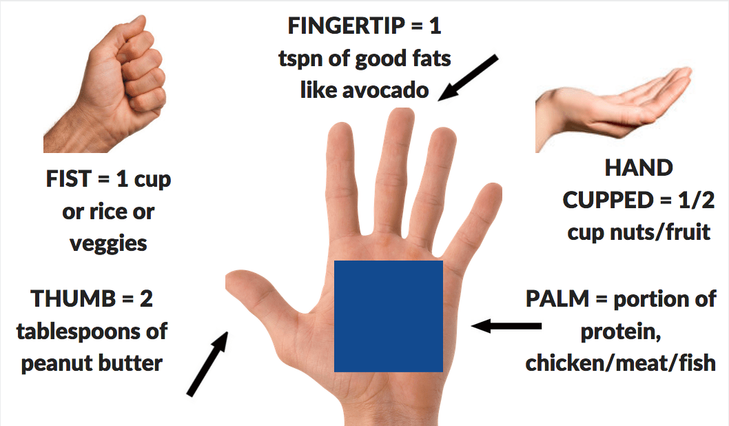Hand-Sizes.png