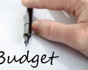 Budget_630x2350.jpg