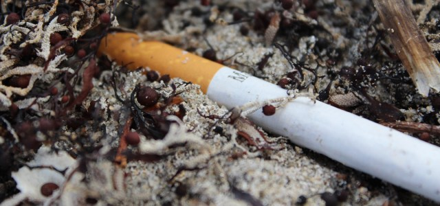 No butts about it: Beach smoking ban would only be beneficial for Floridians