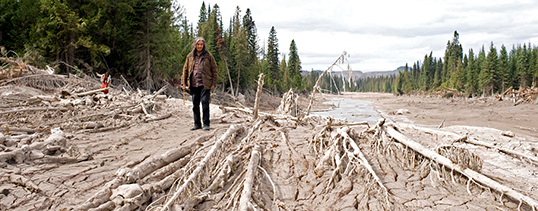 Effects of the Mount Polley mine disaster in 2014. | Photo by Jeremy Board