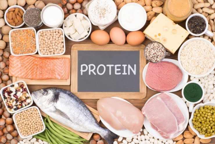 protein, meat, fish, cheese, nuts