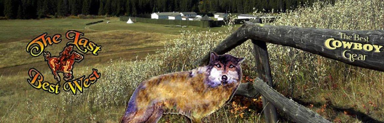 Fur Trade History of America