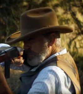 Pierce Brosnan in The Son