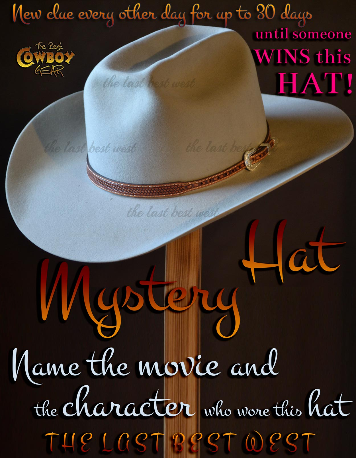 Mystery Cowboy Hat