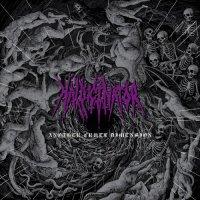 Hallucinator - Another Cruel Dimension (2020)