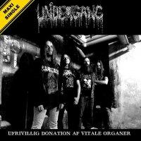 Undergang - Ufrivillig Donation Af Vitale Organer (2019)