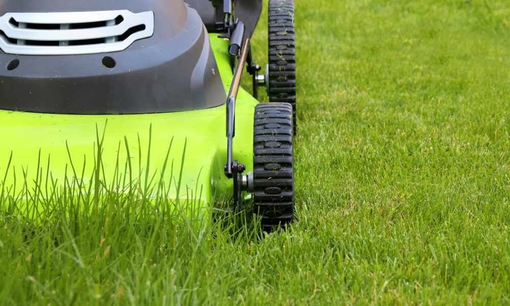 Lawn Care Advertising Ideas - The Lawn Solutions