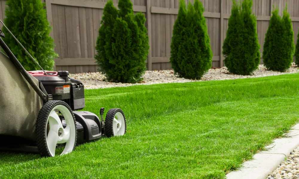 Lawn Service Business Cards