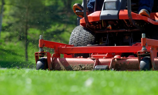 Commercial vs Residential Lawn Care