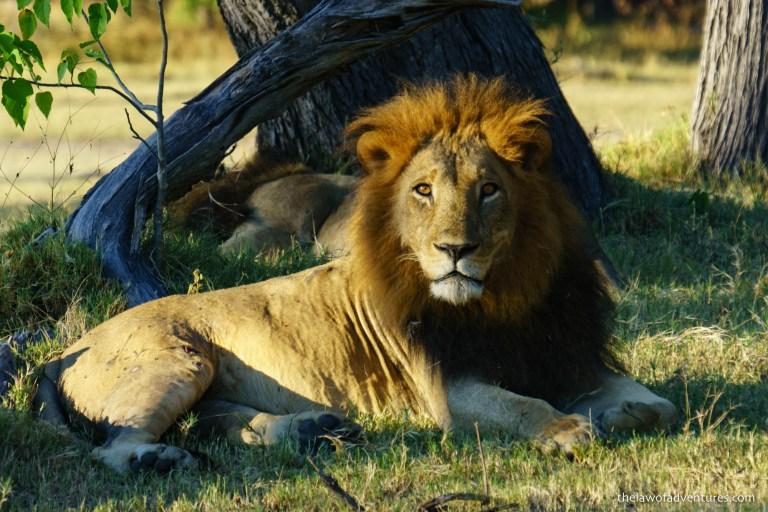 Botswana Blog-145