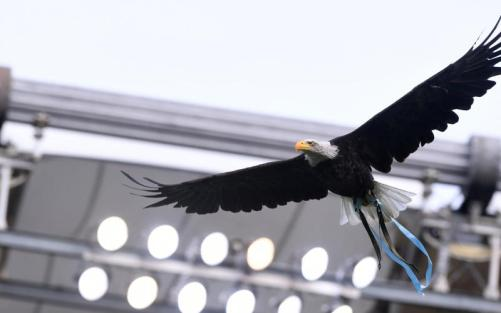 Aquila, Source- Official S.S. Lazio
