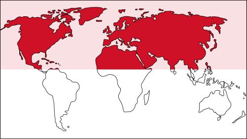 Laziali Worldwide, Indonesia