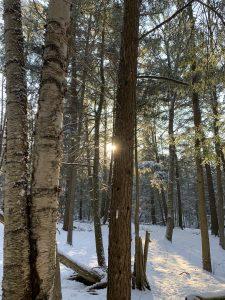Dave Kerwin Trail