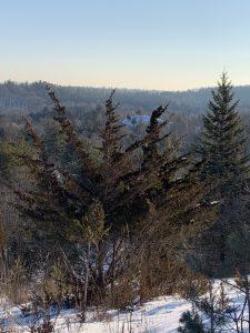 Glen Eagles Vista Trail