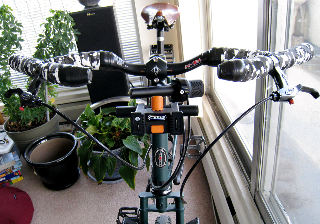 Rohloff Shifter mounted on a Thorn Accessory Bar