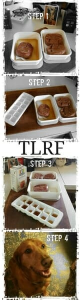 DIY Dog Treat Recipe by TLRF
