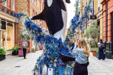 Chelsea in Bloom 2019 - The LDN Diaries