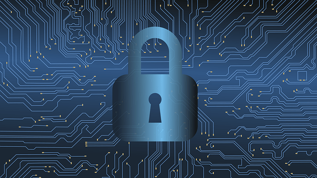 Cannabis Cybersecurity: 5 Digital Transformation-Driven Data Security Considerations