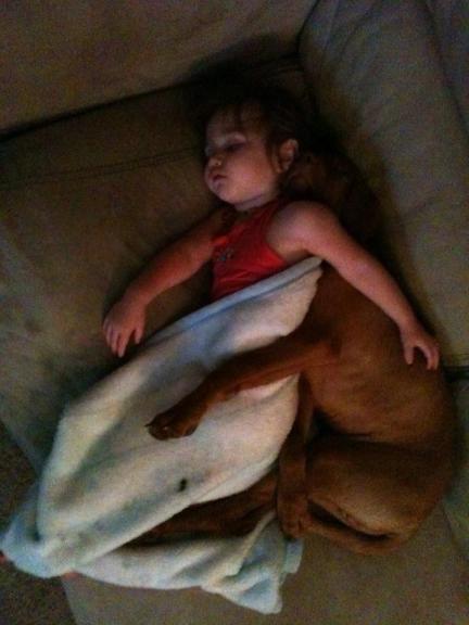 sleeping cuddling dog