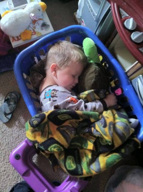 sleeping in the laundry basket